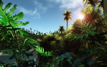 Tropic-Jungle-Wallpaper