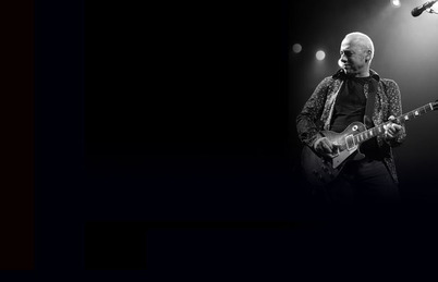 Mark_Knopfler_New_Website_Large_Picture-Vertical