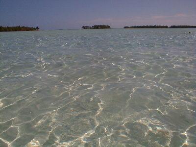 lagoon6