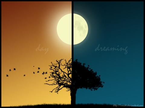 dream4