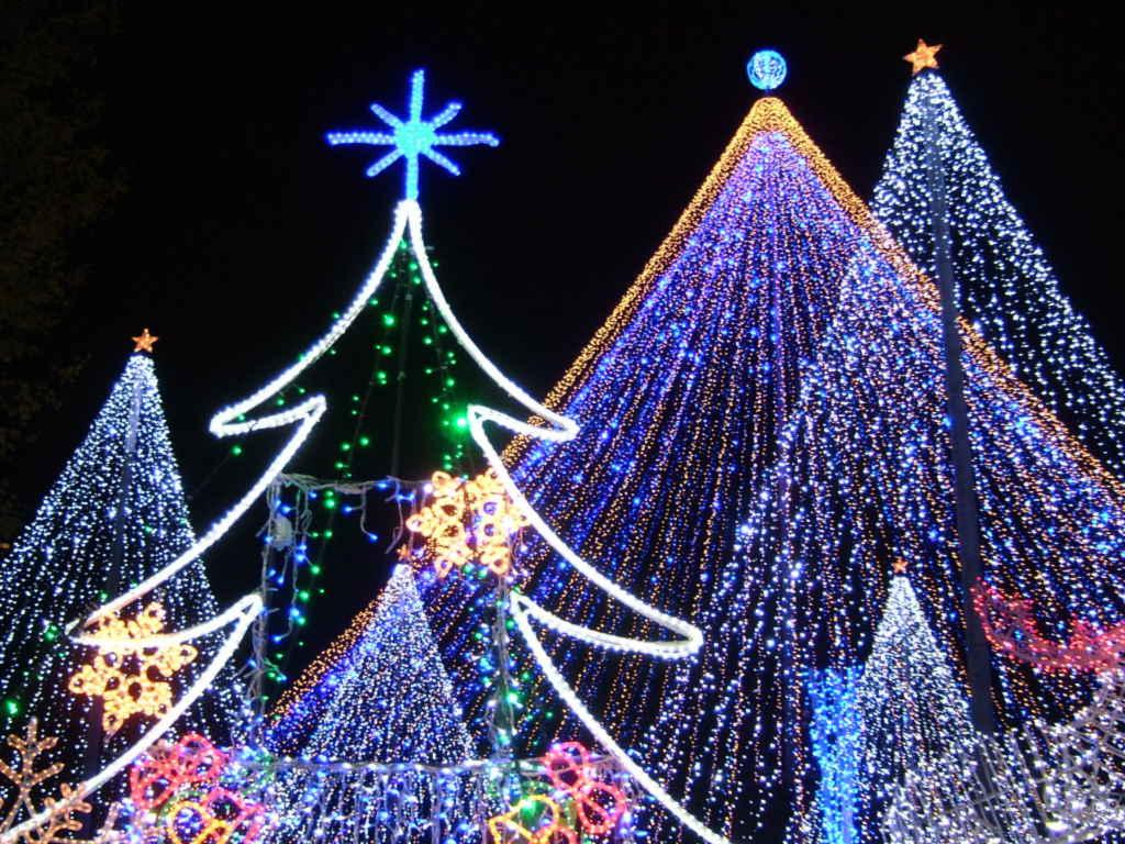 【画像あり】クリスマス前だしイルミネーション画像集めようぜwww_画像_023