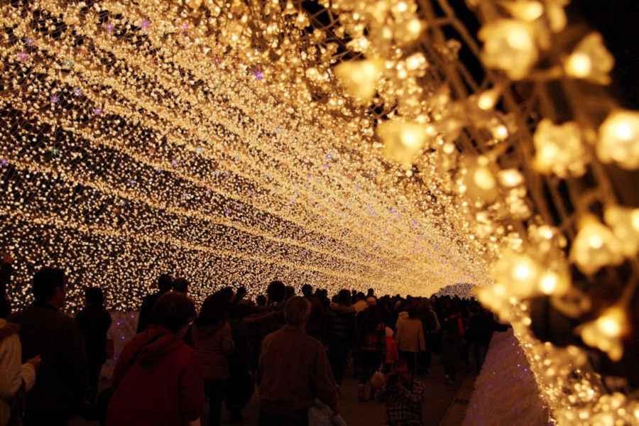 【画像あり】クリスマス前だしイルミネーション画像集めようぜwww_画像_014