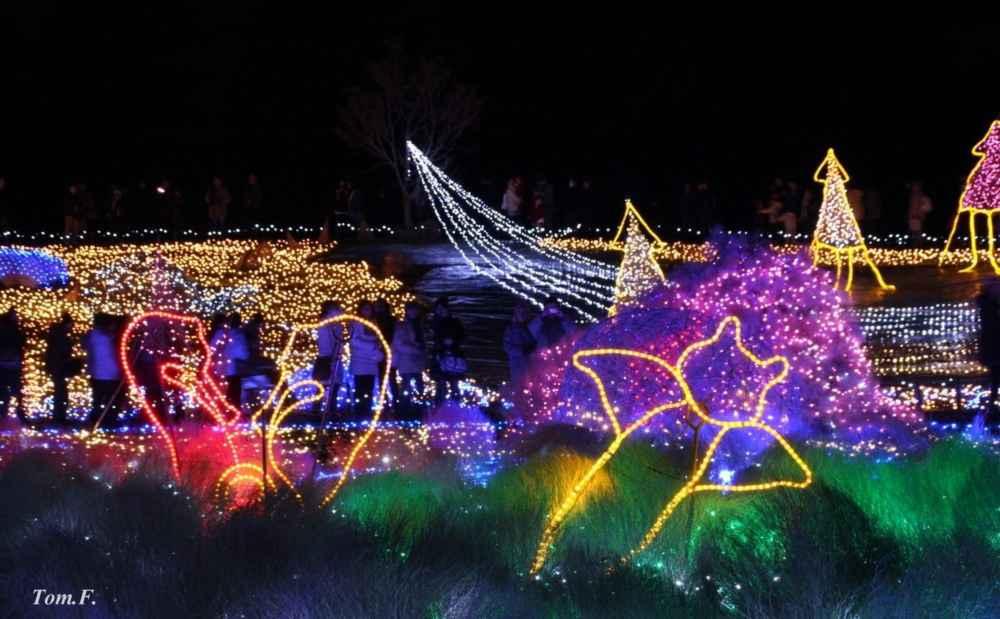 【画像あり】クリスマス前だしイルミネーション画像集めようぜwww_画像_011