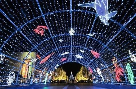 【画像あり】クリスマス前だしイルミネーション画像集めようぜwww_画像_008
