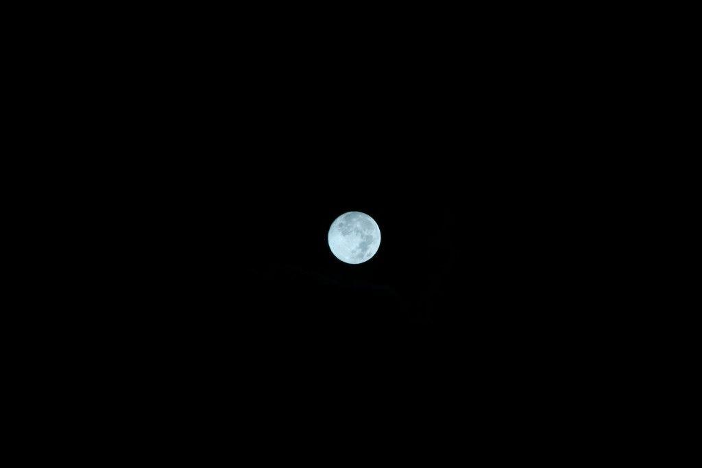 【画像】月がキレイ_画像_001