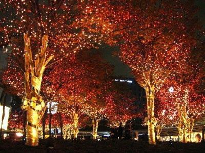 【画像あり】クリスマス前だしイルミネーション画像集めようぜwww_画像_013