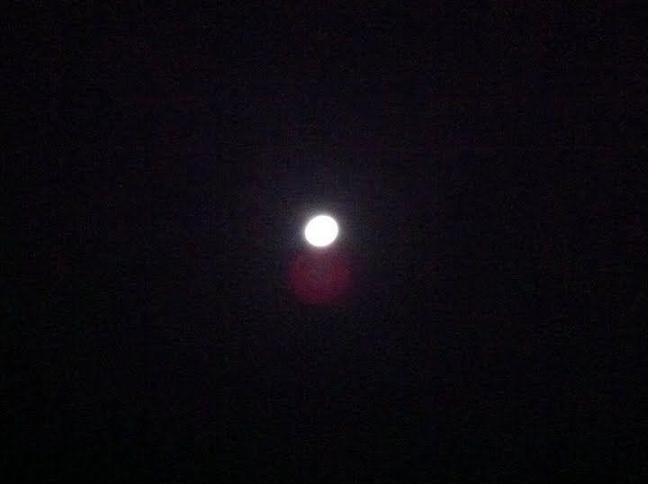 【画像】月がキレイ_画像_025