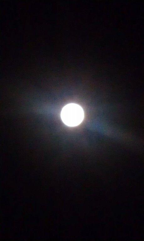 【画像】月がキレイ_画像_031