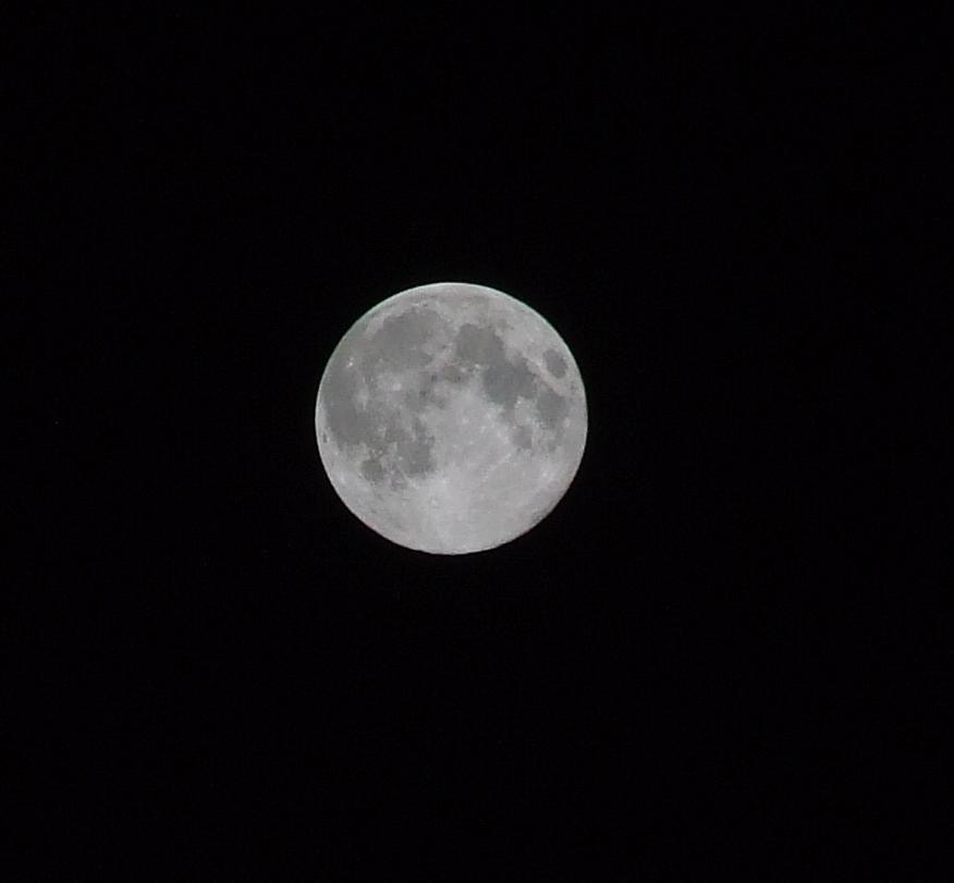 【画像】月がキレイ_画像_006