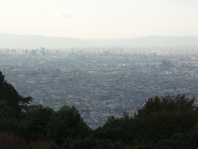 【画像】神戸の夜景が綺麗すぎる_画像_013