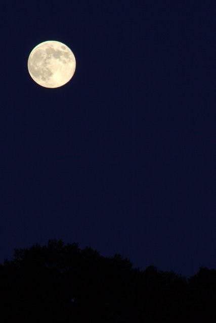 【画像】月がキレイ_画像_038