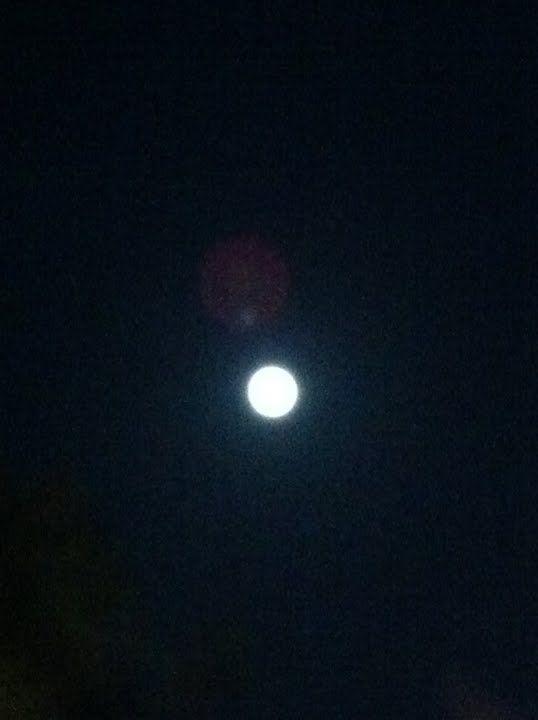 【画像】月がキレイ_画像_018