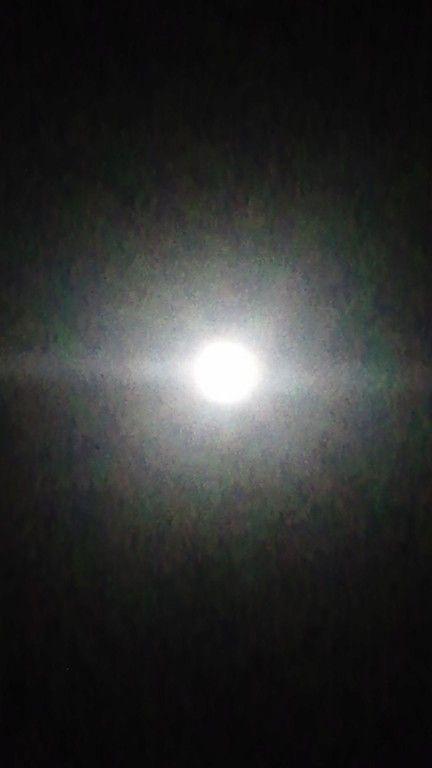 【画像】月がキレイ_画像_019