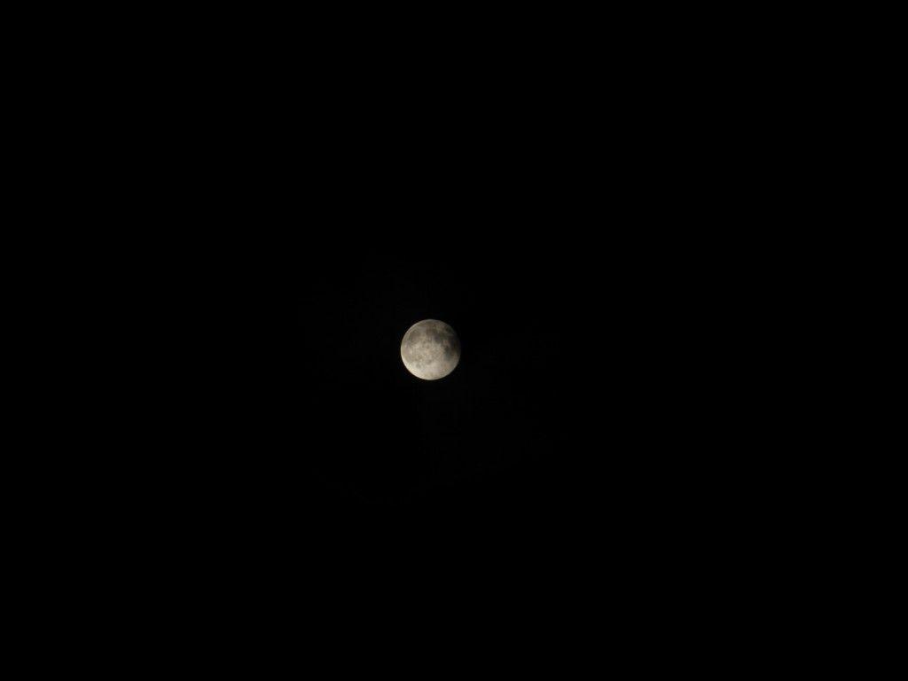 【画像】月がキレイ_画像_021
