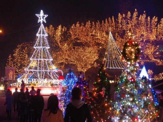 【画像あり】クリスマス前だしイルミネーション画像集めようぜwww_画像_003