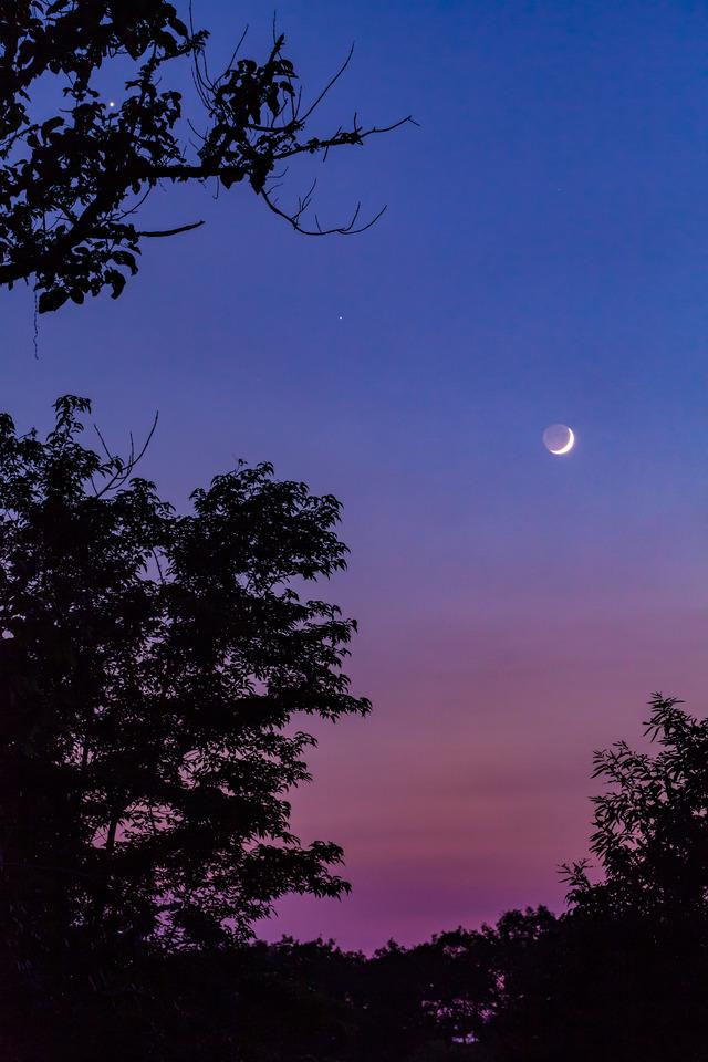 金星と月1