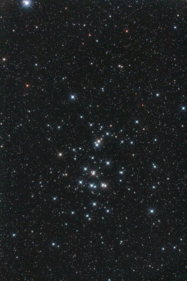 プレセペ星団B-1S-1P--flatten-1S