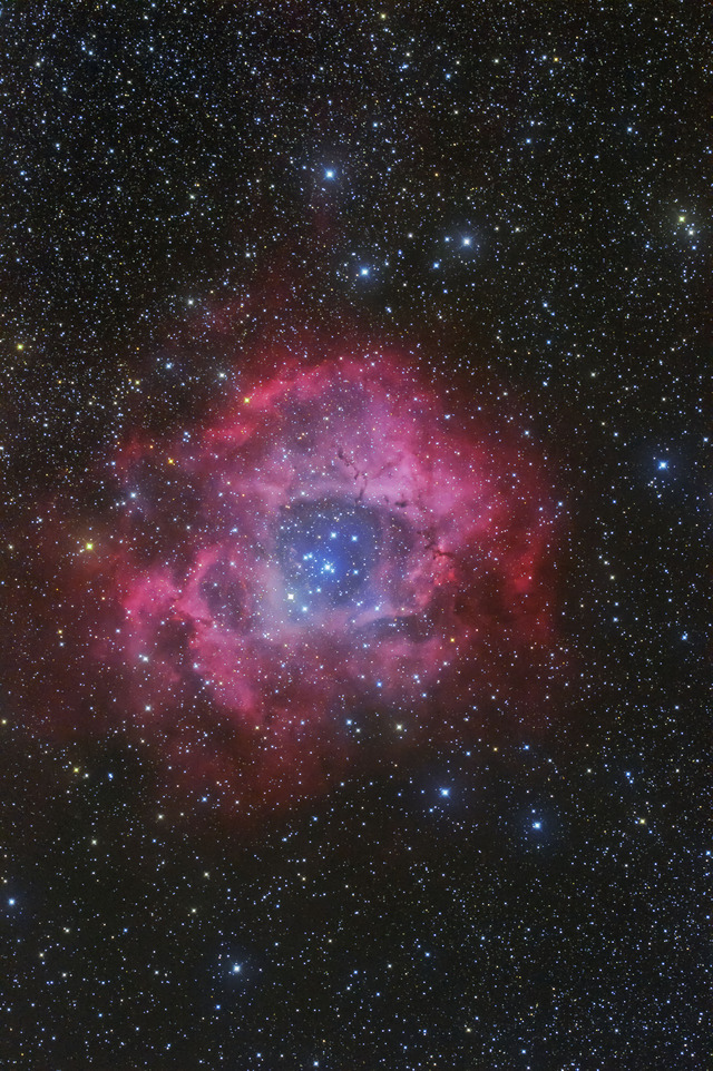 バラ星雲-C1-3S-1P-2P-1P-1P