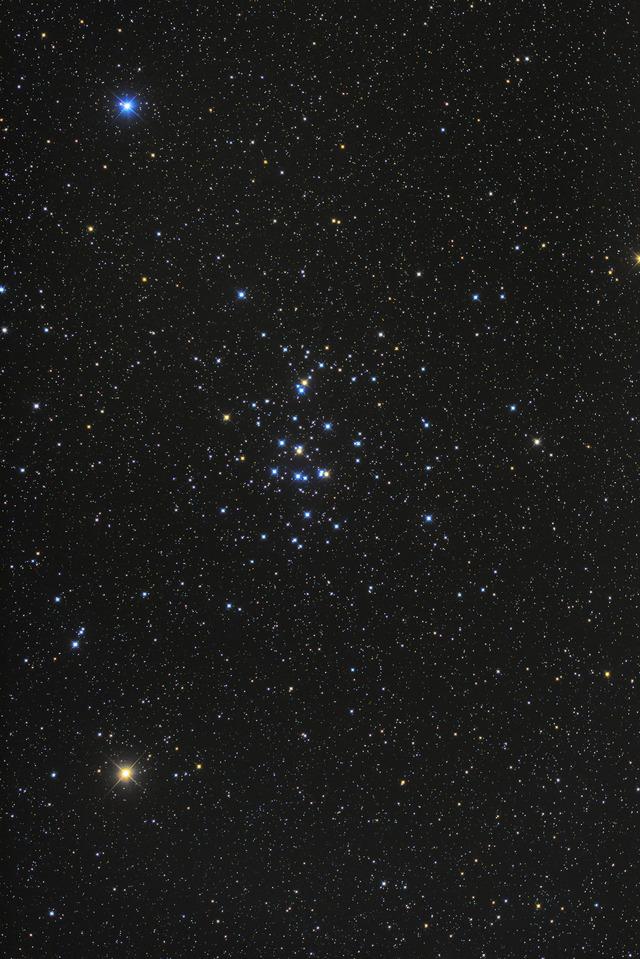 M44-C1-1S-1P-1P-1P-1P