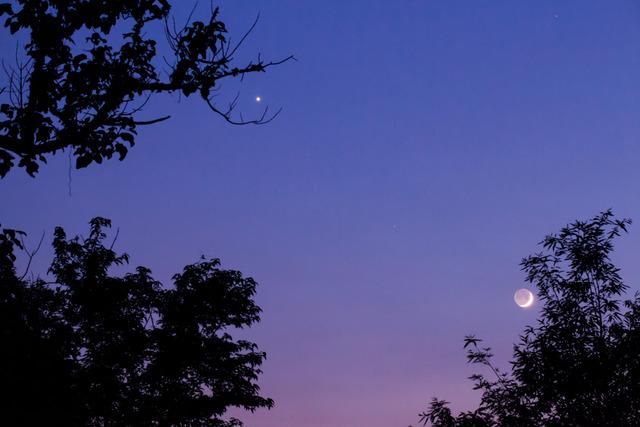 金星と月3