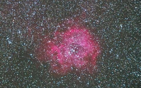 バラ星雲-T