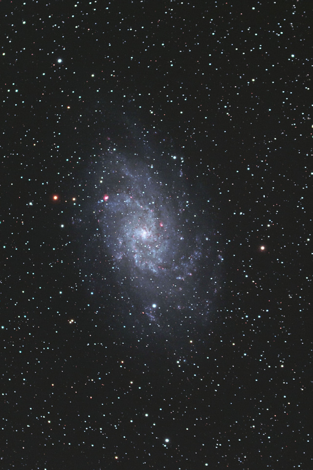 M33_バイリニアB-FL1-T