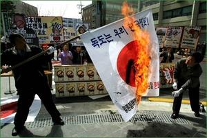 韓国人の日の丸毀損 (1)