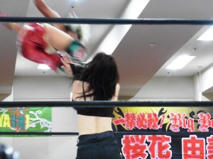 AKINO&小林香萌vs尾崎弓&桜花由美 (8)