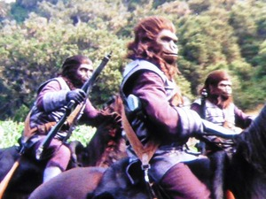 猿の惑星 (1)