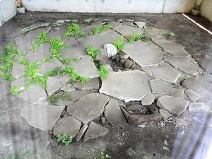 長井石器時代住居跡 (2)
