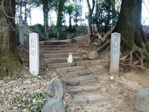 龍昌寺 (4)
