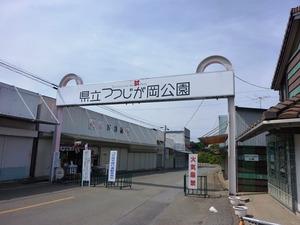 つつじが岡公園 (1)