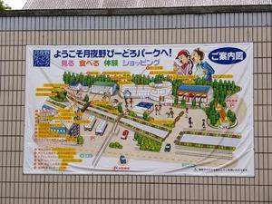 月夜野びどろパーク (6)