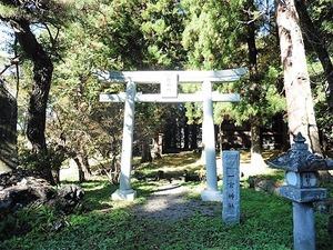 金井一宮神社 (1)