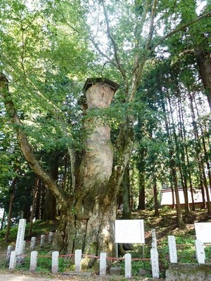 親都神社 (1)