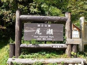 尾瀬石清水 (2)