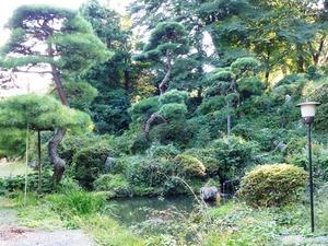 永源寺 (5)