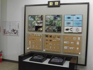 榛名ビジターセンター (5)