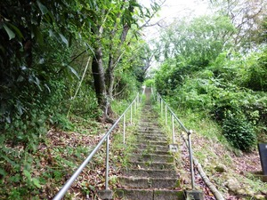 山ノ上碑 (3)