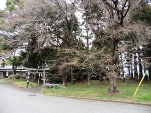 八宮神社 (6)