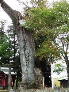 川田神社 (5)