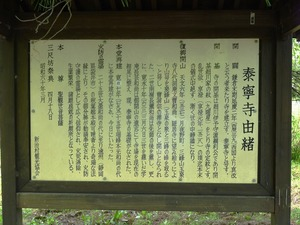 泰寧寺 (2)