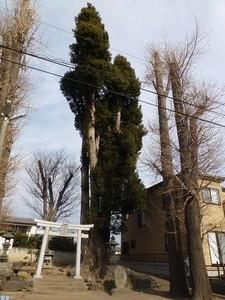 宮鍋神社 (5)
