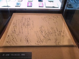 前橋文学館 (6)
