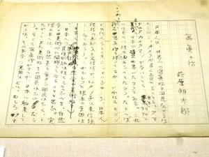 前橋文学館 (7)