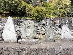 三波川金剛寺 (11)