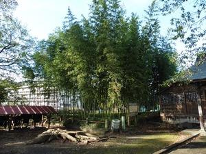上の森八幡宮 (5)