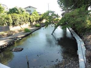水沼神社 (9)