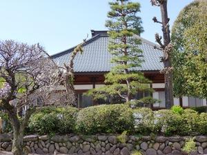 松岸寺 (3)