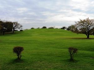 いせさき市民のもり公園 (5)